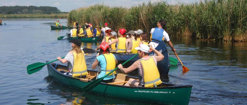 Peenesafari: 3-hour canoe excursion for school classes from/to Anklam
